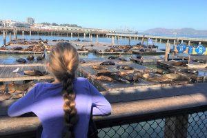 Những trải nghiệm du lịch tuyệt vời ở Pier 39 San Francisco
