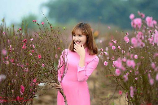 Săn lùng loạt địa điểm chụp ảnh Tết siêu đẹp ở Hà Nội