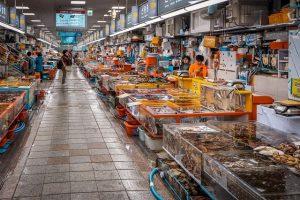 Chợ cá Jagalchi – nơi lý tưởng để thưởng thức hải sản tươi ngon ở Busan